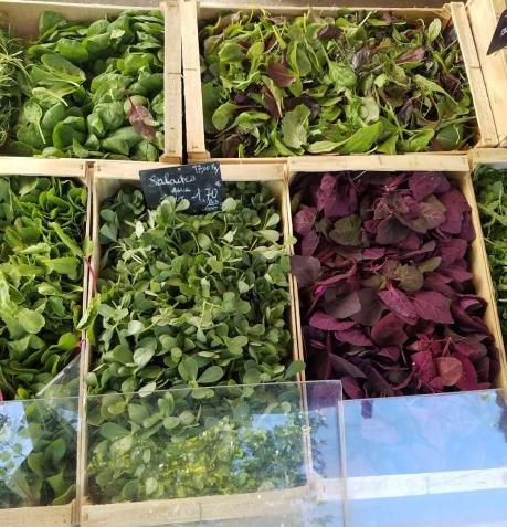 Fresh organic spinach...